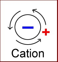 Bioélectronique ions polarité cation
