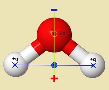 bioélectrique eau molécule polarisée