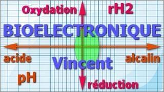 bioélectronique entête