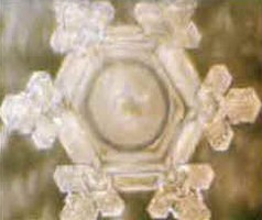 bioélectronique mémoire eau flocon