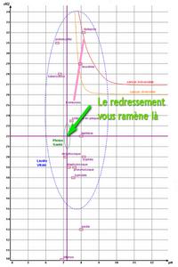 energescence bioelectronique terrain pathologique redressement pt