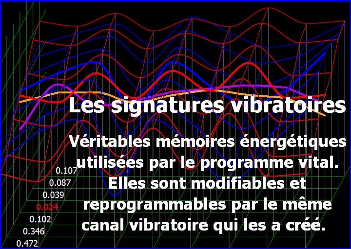 energescence biorésonance séance mémoires