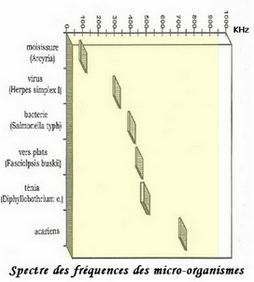 spectre parasites